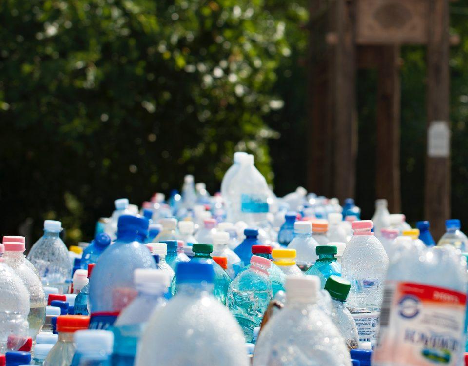 Ciekawostki ekologiczne ktore przekonaja Cie do recyklingu