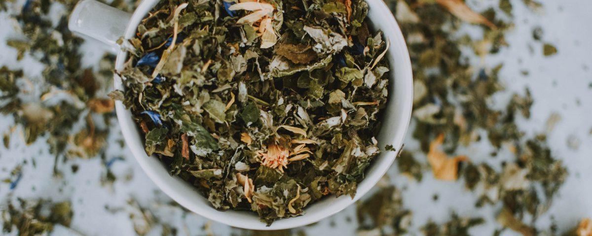 Herbata z konopi - wlasciwosci i przygotowanie